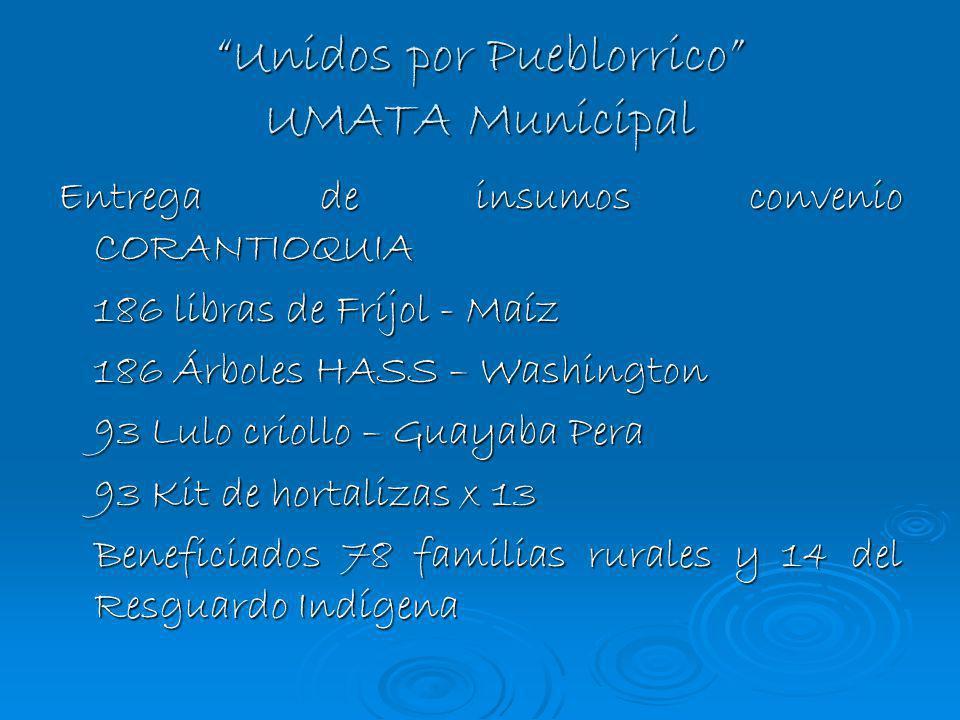 Unidos por Pueblorrico UMATA Municipal Entrega de insumos convenio CORANTIOQUIA 186 libras de Fríjol - Maíz 186 Árboles HASS – Washington 93 Lulo crio