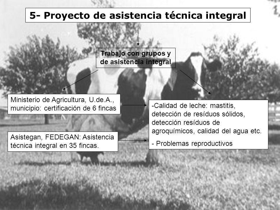 5- Proyecto de asistencia técnica integral Ministerio de Agricultura, U.de.A., municipio: certificación de 6 fincas Asistegan, FEDEGAN: Asistencia téc