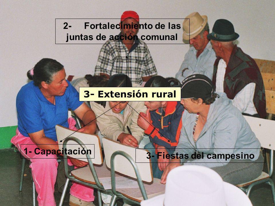 3- Extensión rural 1- Capacitación 2- Fortalecimiento de las juntas de acción comunal 3- Fiestas del campesino