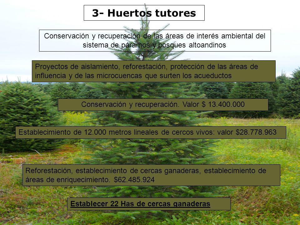 3- Huertos tutores Conservación y recuperación de las áreas de interés ambiental del sistema de páramos y bosques altoandinos Reforestación, estableci
