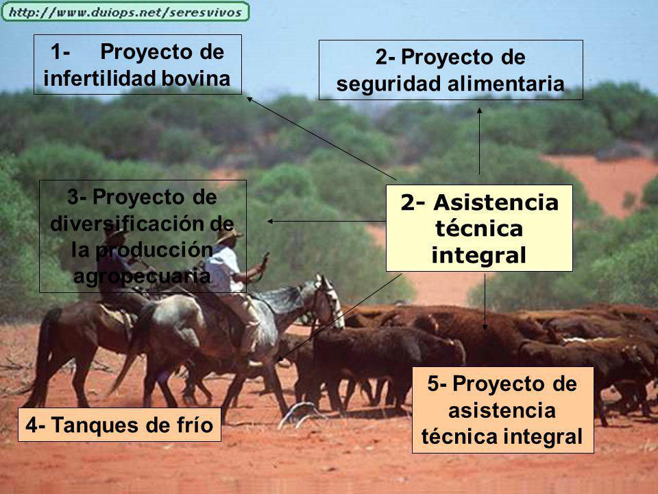 2- Asistencia técnica integral 1- Proyecto de infertilidad bovina 2- Proyecto de seguridad alimentaria 3- Proyecto de diversificación de la producción