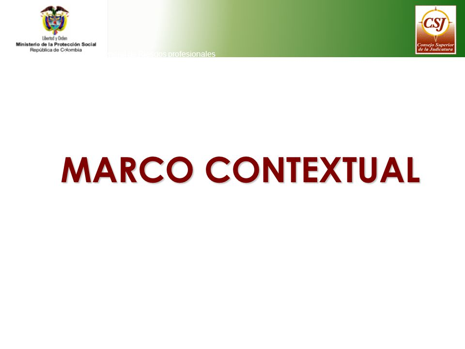 MARCO CONTEXTUAL Direeción General de Riesgos profesionales