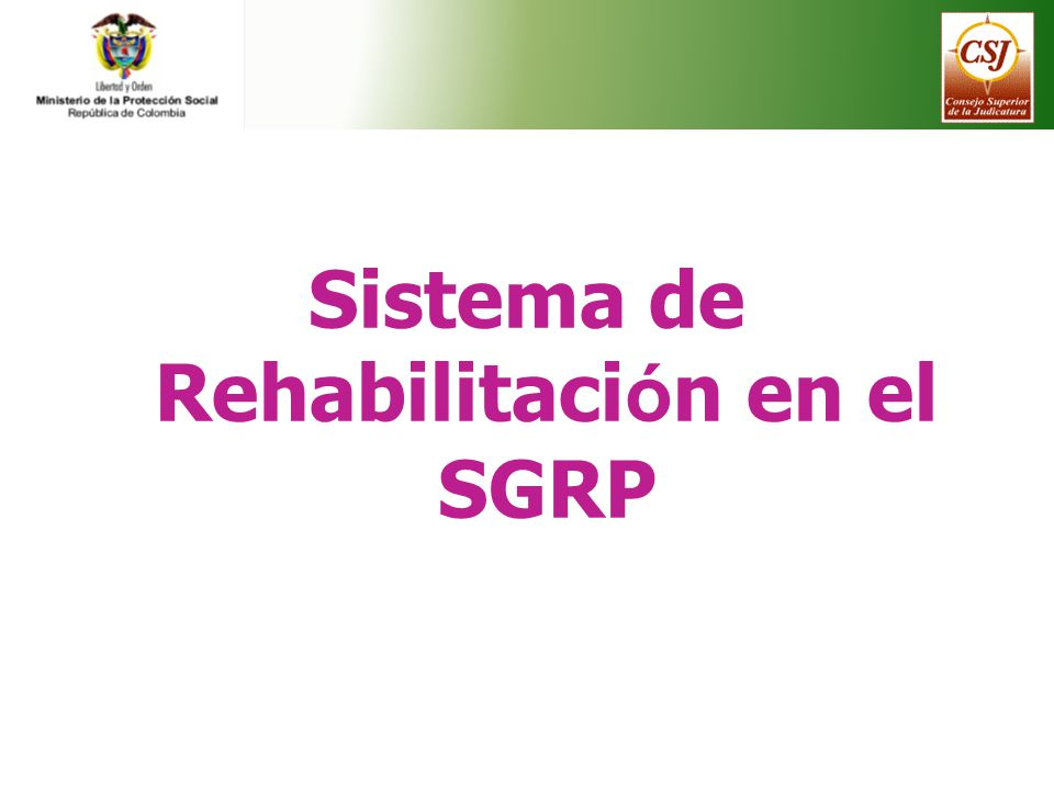 Sistema de Rehabilitaci ó n en el SGRP