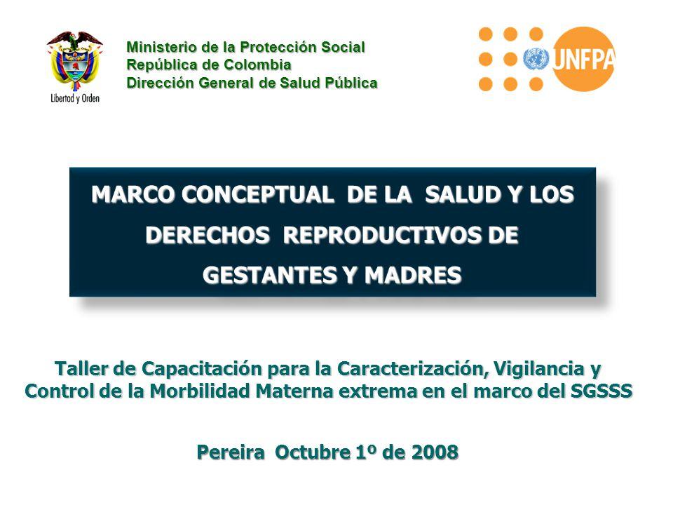 Taller de Capacitación para la Caracterización, Vigilancia y Control de la Morbilidad Materna extrema en el marco del SGSSS Ministerio de la Protecció