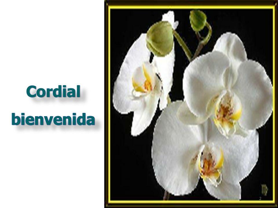 Ministerio de la Protección Social República de Colombia Dirección General de Salud Pública
