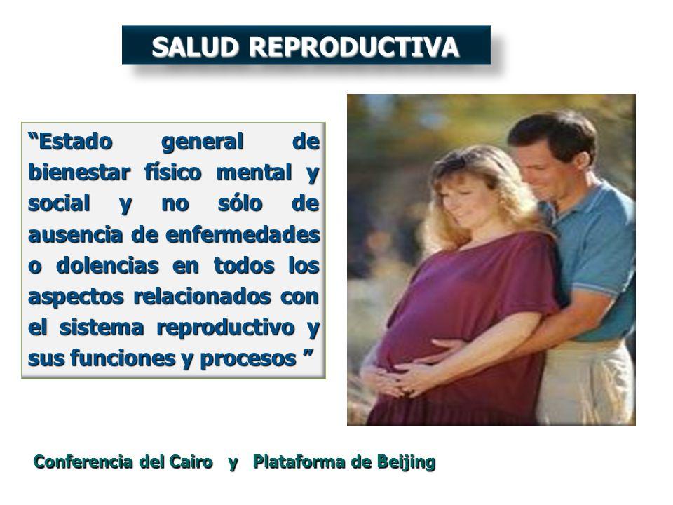 Estado general de bienestar físico mental y social y no sólo de ausencia de enfermedades o dolencias en todos los aspectos relacionados con el sistema