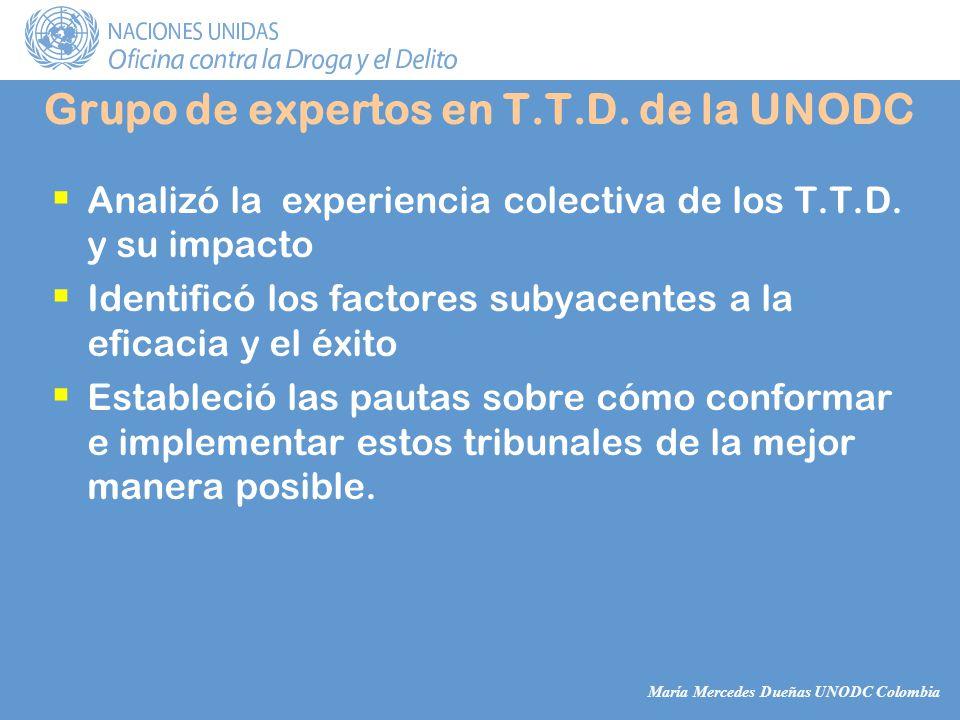 María Mercedes Dueñas UNODC Colombia Analizó la experiencia colectiva de los T.T.D.