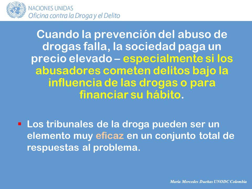 María Mercedes Dueñas UNODC Colombia Cuando la prevención del abuso de drogas falla, la sociedad paga un precio elevado – especialmente si los abusadores cometen delitos bajo la influencia de las drogas o para financiar su hábito.