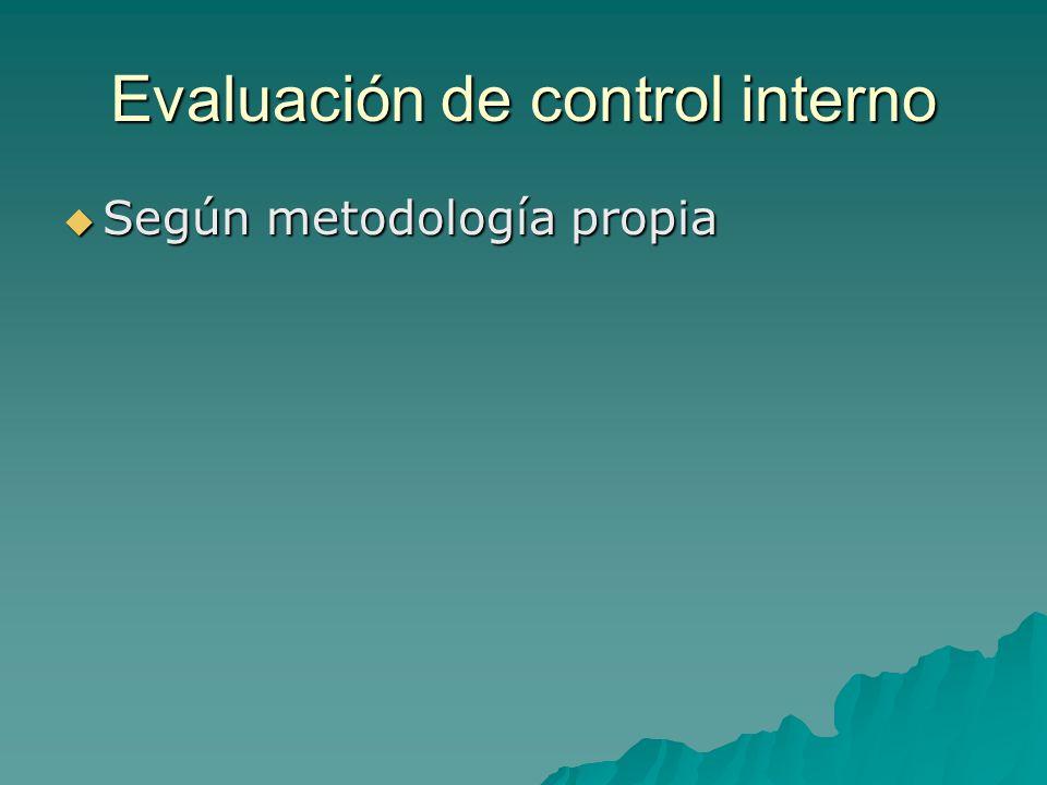 Evaluación de control interno Según metodología propia Según metodología propia