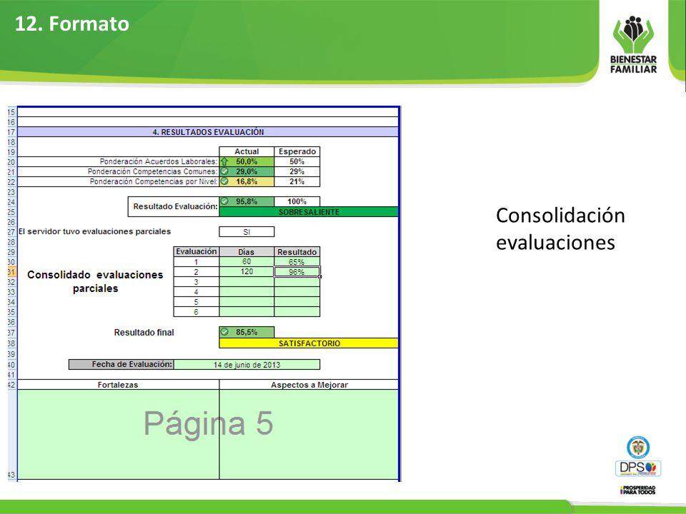 12. Formato Consolidación evaluaciones