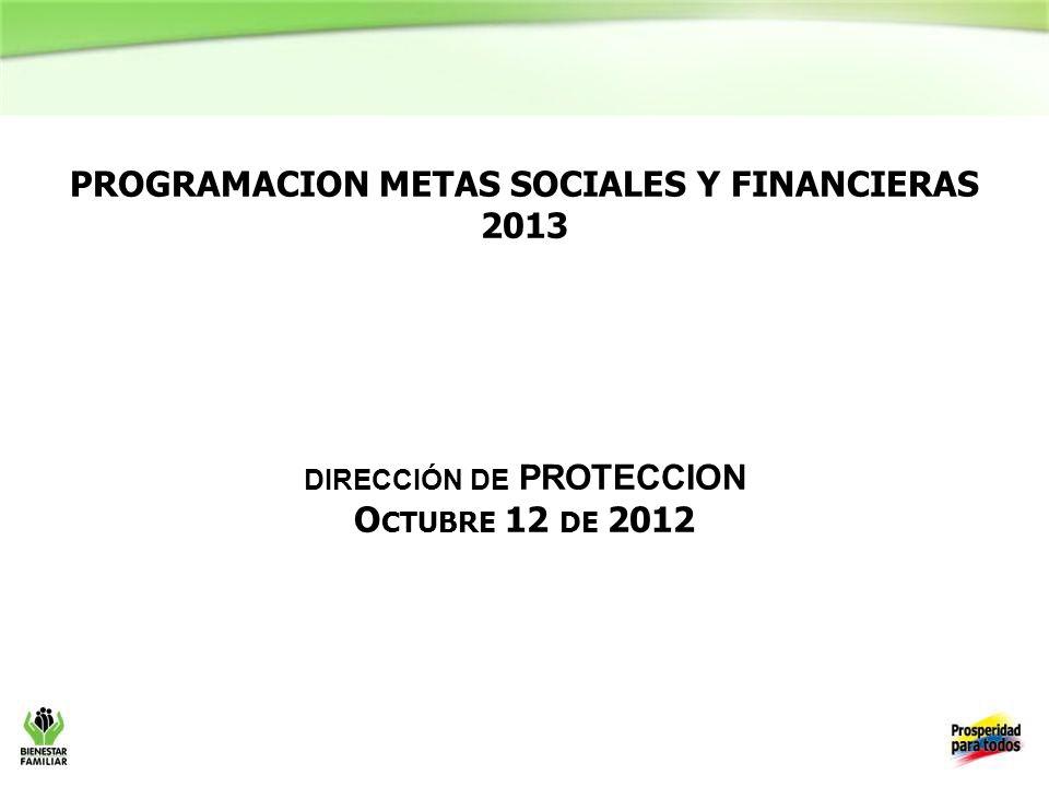 PROGRAMACION METAS SOCIALES Y FINANCIERAS 2013 DIRECCIÓN DE PROTECCION O CTUBRE 12 DE 2012