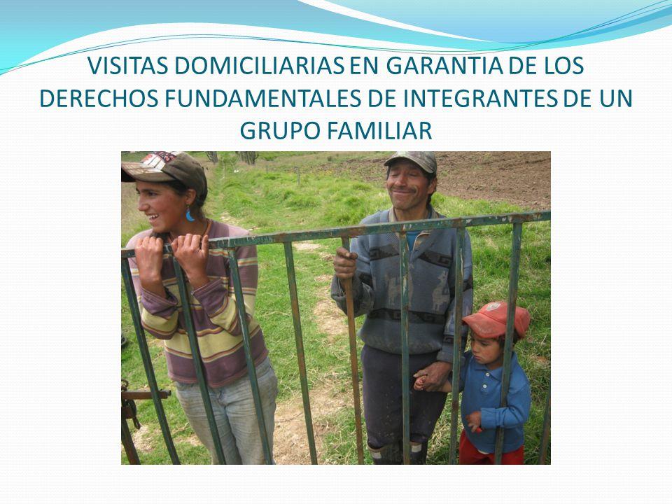 VISITAS DOMICILIARIAS EN GARANTIA DE LOS DERECHOS FUNDAMENTALES DE INTEGRANTES DE UN GRUPO FAMILIAR
