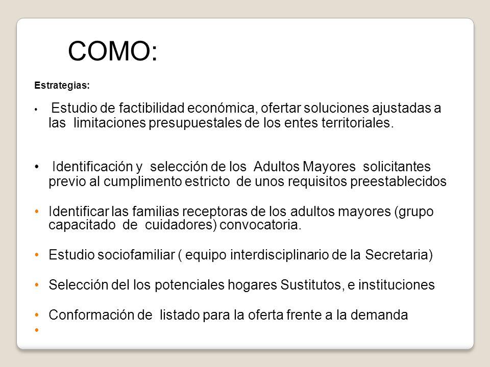 Estrategias: Estudio de factibilidad económica, ofertar soluciones ajustadas a las limitaciones presupuestales de los entes territoriales. Identificac