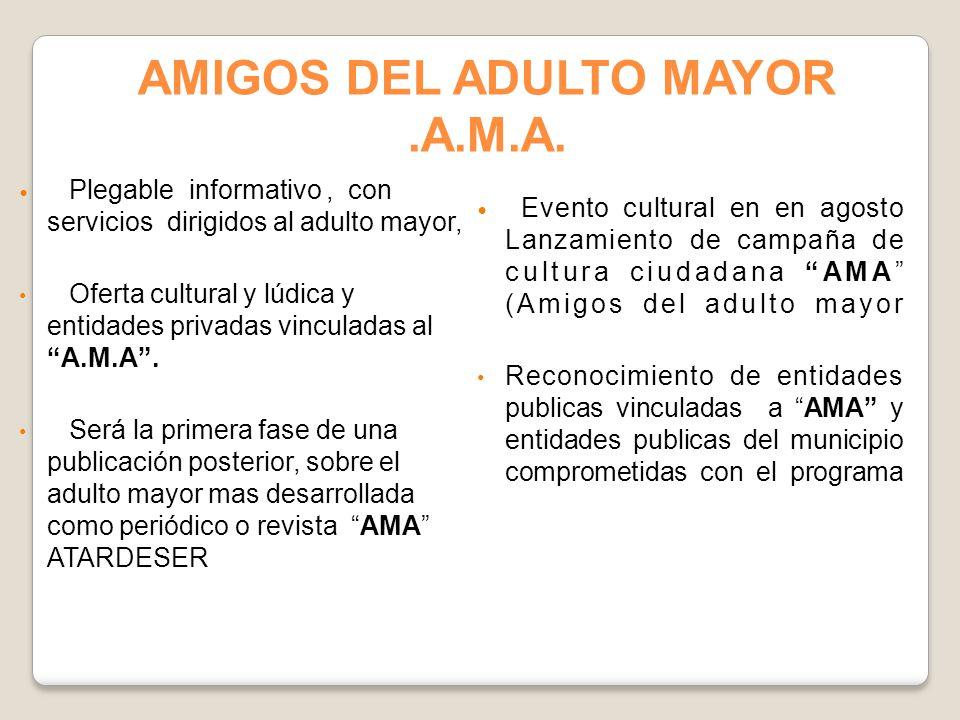 Plegable informativo, con servicios dirigidos al adulto mayor, Oferta cultural y lúdica y entidades privadas vinculadas al A.M.A. Será la primera fase