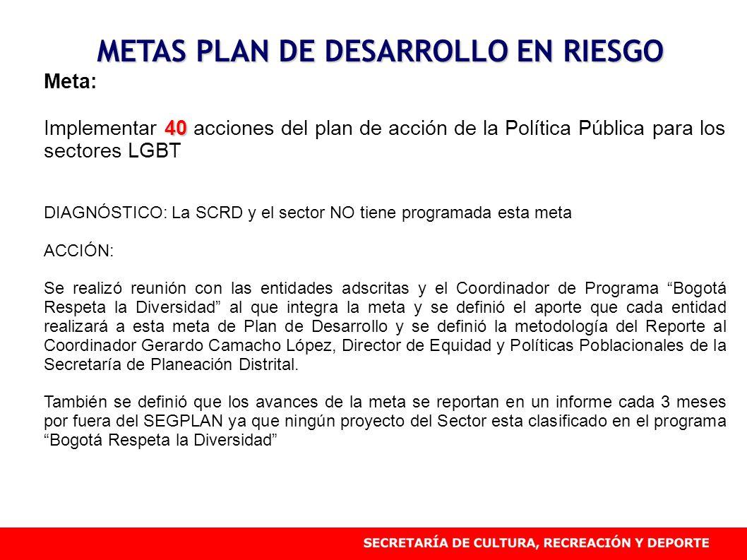 METAS PLAN DE DESARROLLO EN RIESGO Meta: 40 Implementar 40 acciones del plan de acción de la Política Pública para los sectores LGBT DIAGNÓSTICO: La S