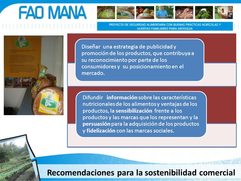 Recomendaciones para la sostenibilidad comercial Diseñar una estrategia de publicidad y promoción de los productos, que contribuya a su reconocimiento