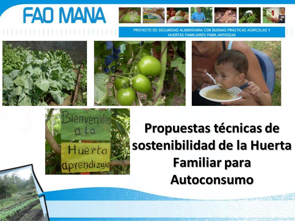 Propuestas técnicas de sostenibilidad de la Huerta Familiar para Autoconsumo