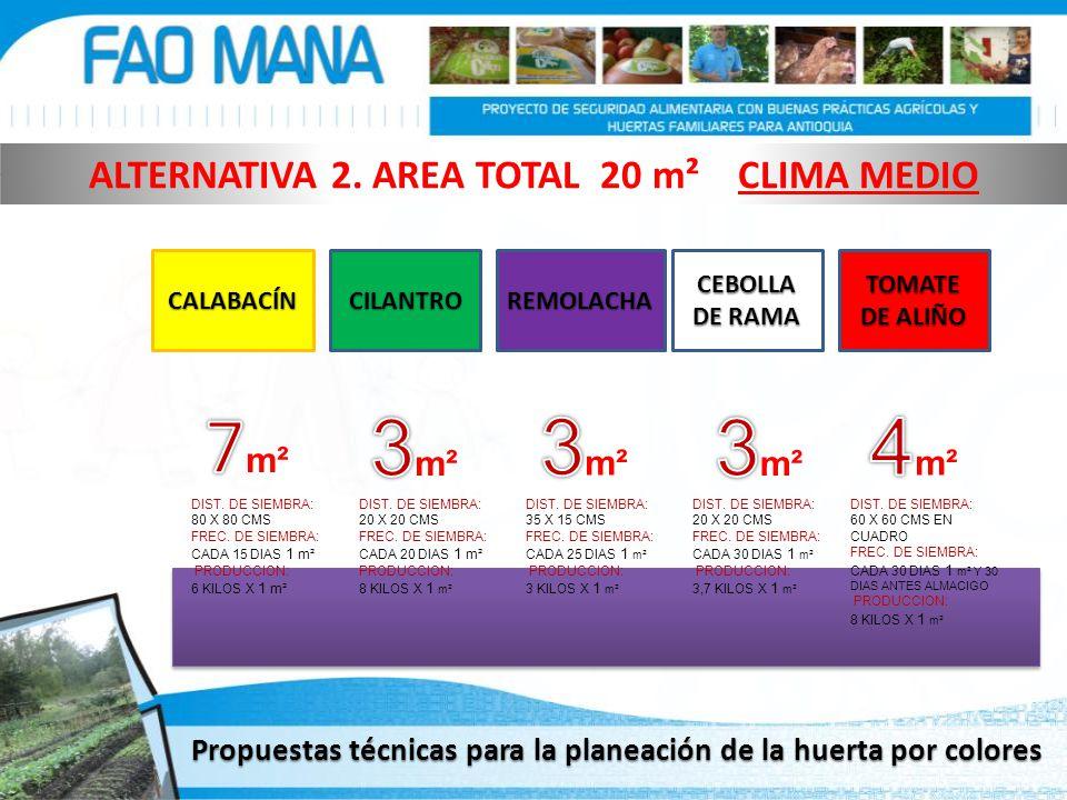 CALABACÍNREMOLACHACILANTRO CEBOLLA DE RAMA TOMATE DE ALIÑO DIST. DE SIEMBRA: 80 X 80 CMS FREC. DE SIEMBRA: CADA 15 DIAS 1 m² PRODUCCION: 6 KILOS X 1 m