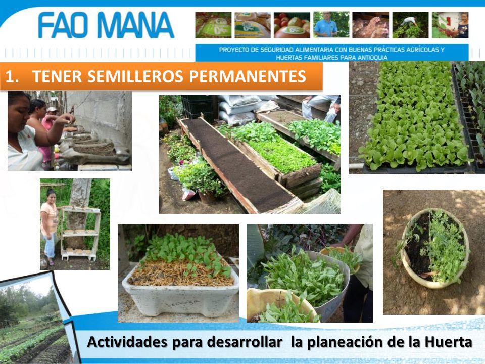 Actividades para desarrollar la planeación de la Huerta 1. TENER SEMILLEROS PERMANENTES
