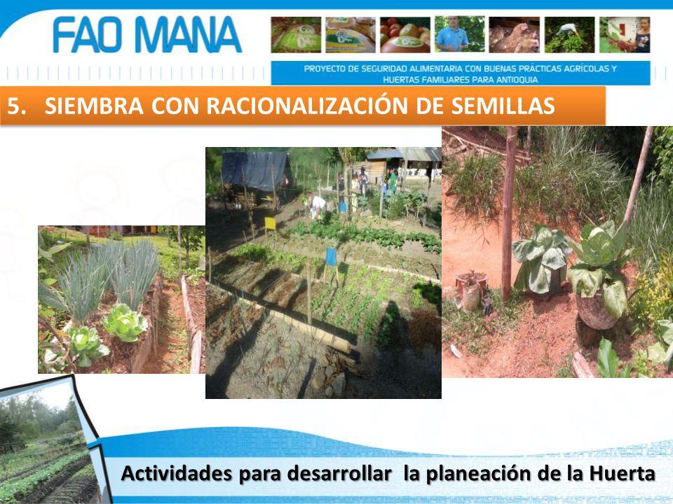 5. SIEMBRA CON RACIONALIZACIÓN DE SEMILLAS Actividades para desarrollar la planeación de la Huerta