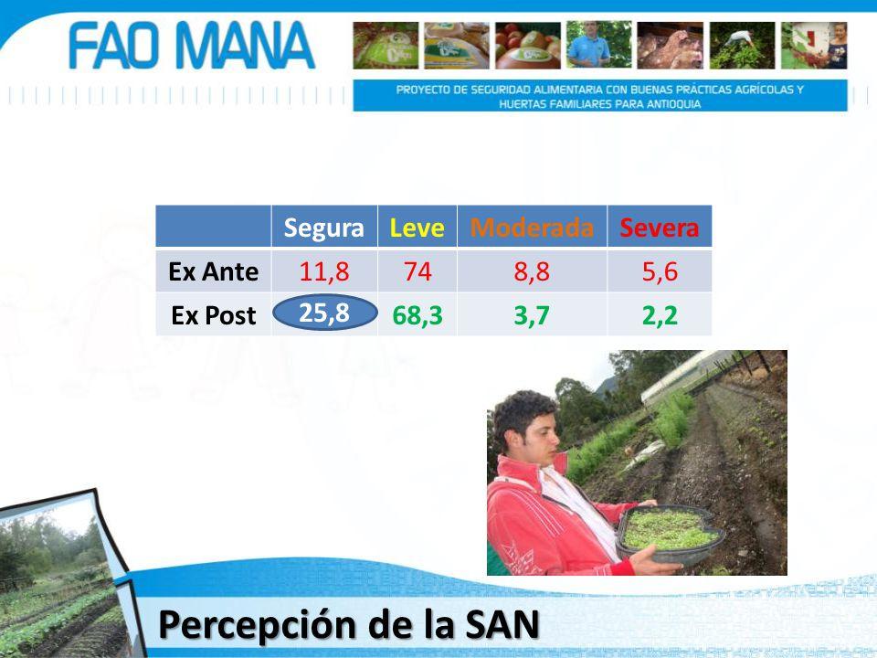 SeguraLeveModeradaSevera Ex Ante11,8748,85,6 Ex Post25,868,33,72,2 25,8 Percepción de la SAN