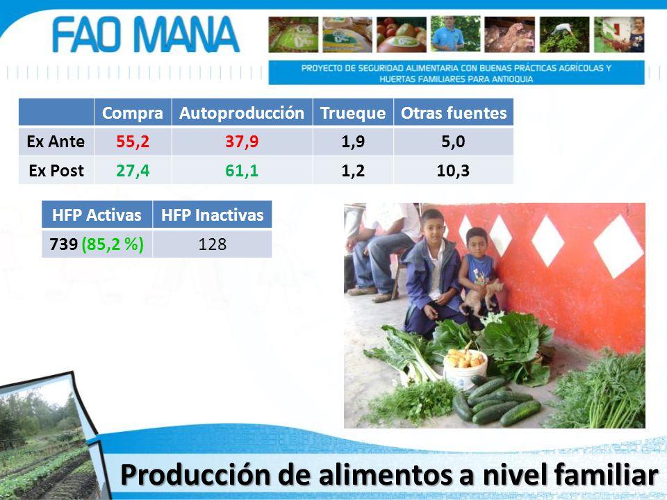 CompraAutoproducciónTruequeOtras fuentes Ex Ante55,237,91,95,0 Ex Post27,461,11,210,3 HFP ActivasHFP Inactivas 739 (85,2 %)128 Producción de alimentos