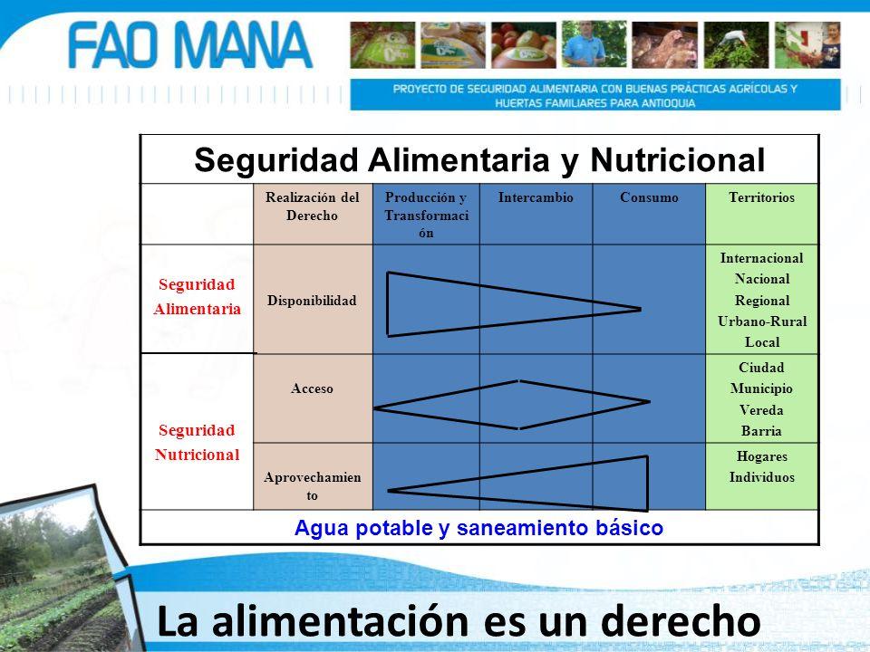 Seguridad Alimentaria y Nutricional Realización del Derecho Producción y Transformaci ón IntercambioConsumoTerritorios Seguridad Alimentaria Seguridad