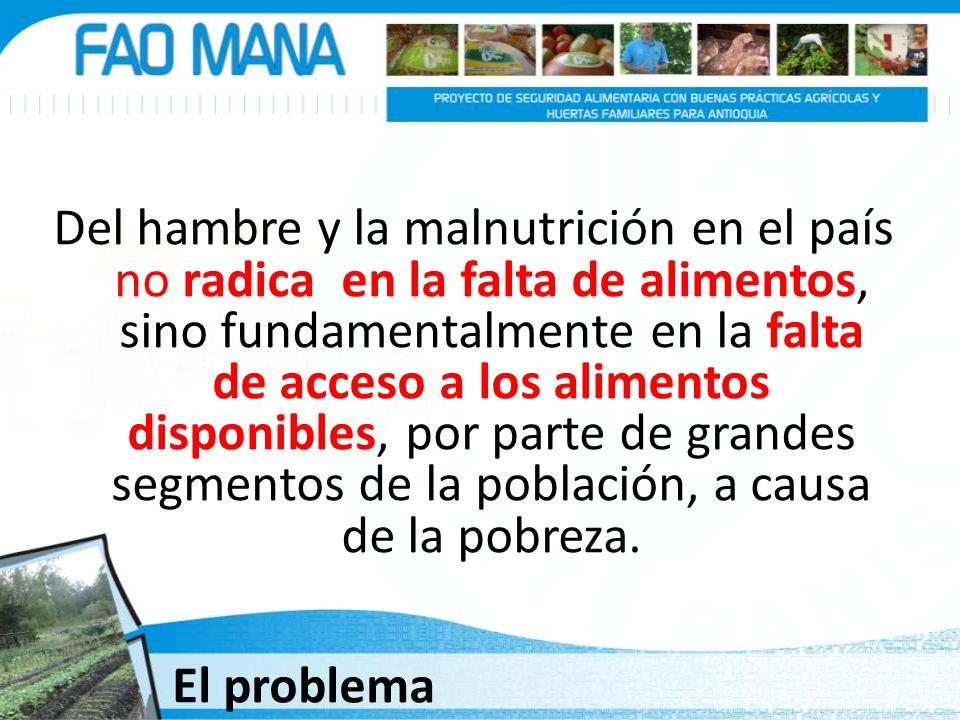 Del hambre y la malnutrición en el país no radica en la falta de alimentos, sino fundamentalmente en la falta de acceso a los alimentos disponibles, p