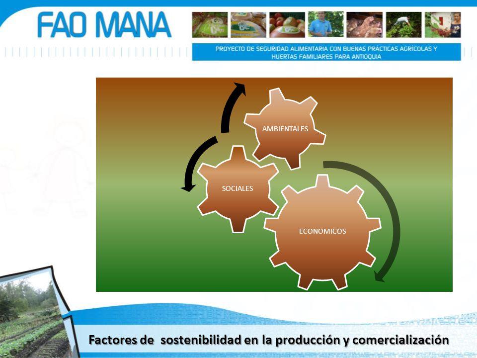 Factores de sostenibilidad en la producción y comercialización ECONOMICOS SOCIALES AMBIENTALES