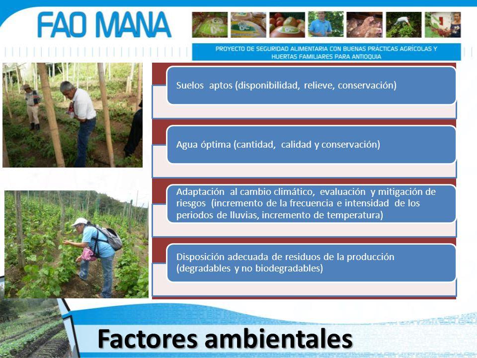 Factores ambientales Suelos aptos (disponibilidad, relieve, conservación)Agua óptima (cantidad, calidad y conservación) Adaptación al cambio climático