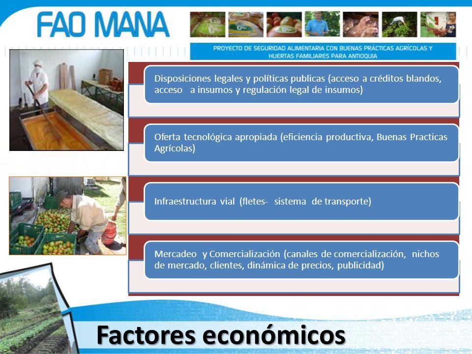 Factores económicos Disposiciones legales y políticas publicas (acceso a créditos blandos, acceso a insumos y regulación legal de insumos) Oferta tecn