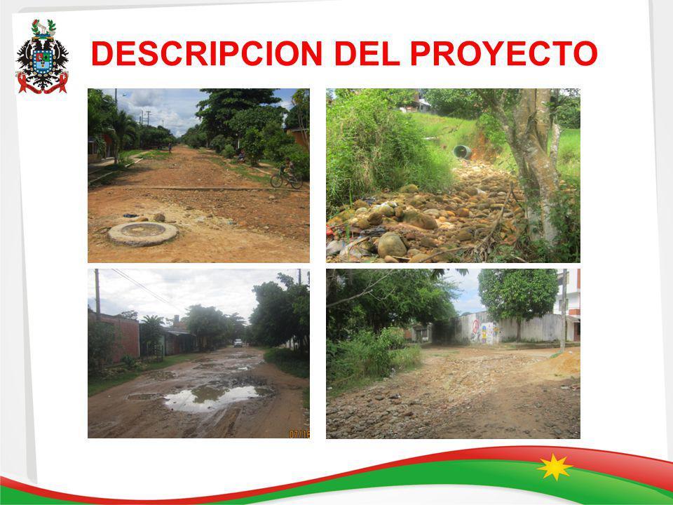 DESCRIPCION DEL PROYECTO INCLUIR REGISTRO F