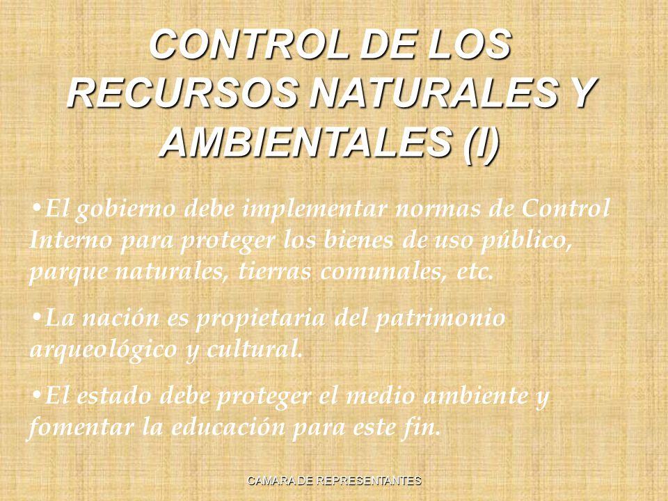 CONTROL DE LOS RECURSOS NATURALES Y AMBIENTALES (I) El gobierno debe implementar normas de Control Interno para proteger los bienes de uso público, parque naturales, tierras comunales, etc.