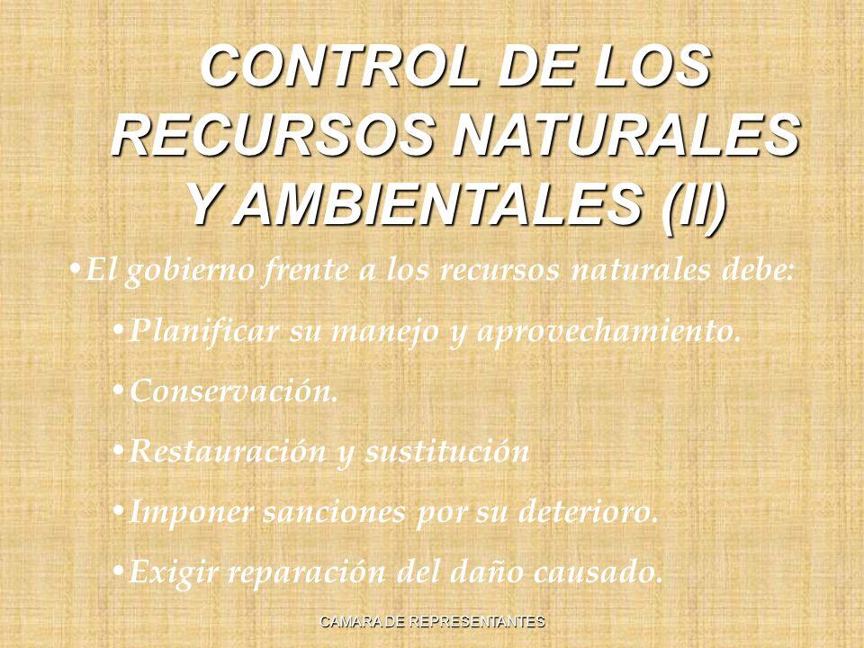 El gobierno frente a los recursos naturales debe: Planificar su manejo y aprovechamiento. Conservación. Restauración y sustitución Imponer sanciones p