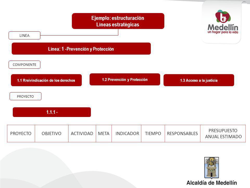 Ejemplo: estructuración Líneas estratégicas Línea : 1 - Prevención y Protección 1.1.1 - LINEA COMPONENTE PROYECTO 1.1 Rreivindicación de los derechos