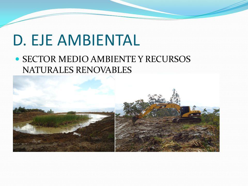 D. EJE AMBIENTAL SECTOR MEDIO AMBIENTE Y RECURSOS NATURALES RENOVABLES