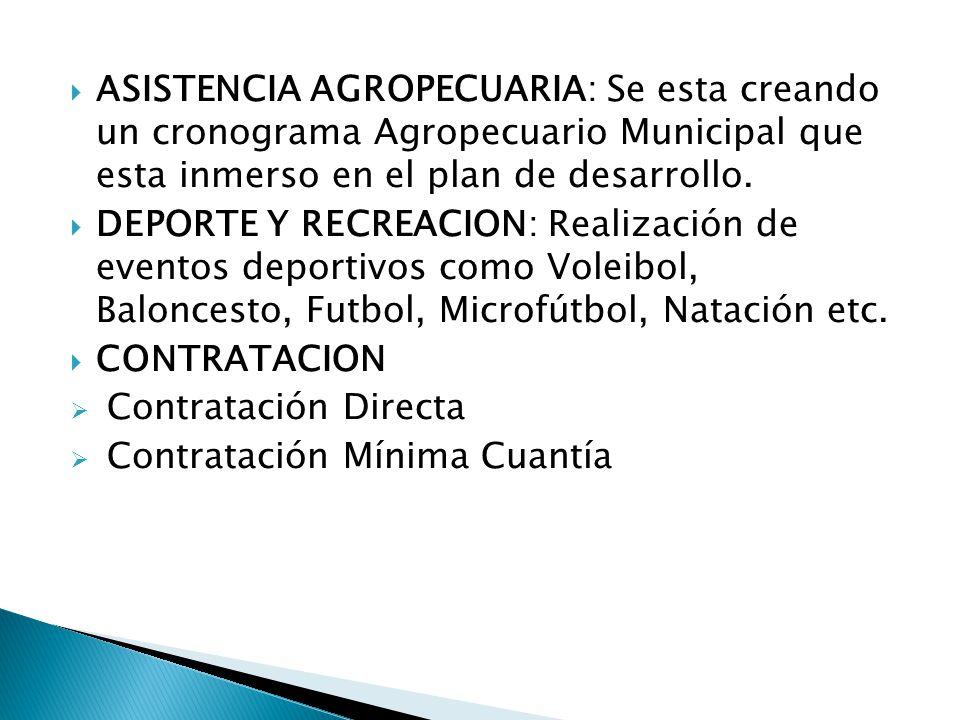 ASISTENCIA AGROPECUARIA: Se esta creando un cronograma Agropecuario Municipal que esta inmerso en el plan de desarrollo.