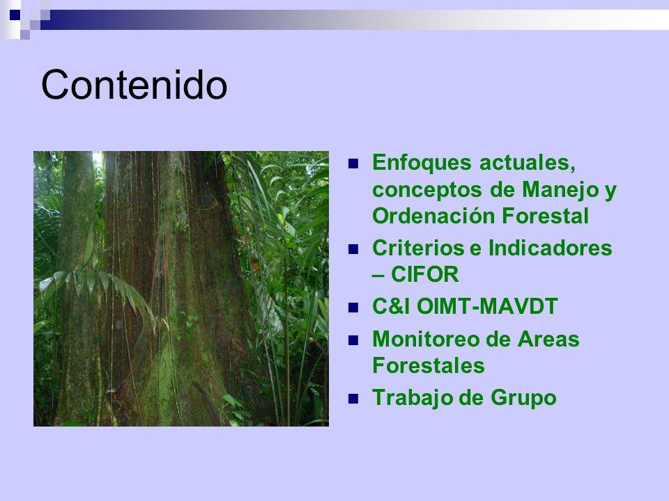 Contenido Enfoques actuales, conceptos de Manejo y Ordenación Forestal Criterios e Indicadores – CIFOR C&I OIMT-MAVDT Monitoreo de Areas Forestales Tr