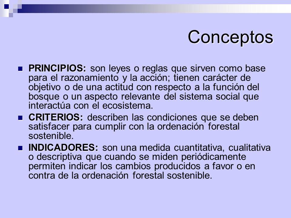 Conceptos PRINCIPIOS: PRINCIPIOS: son leyes o reglas que sirven como base para el razonamiento y la acción; tienen carácter de objetivo o de una actit