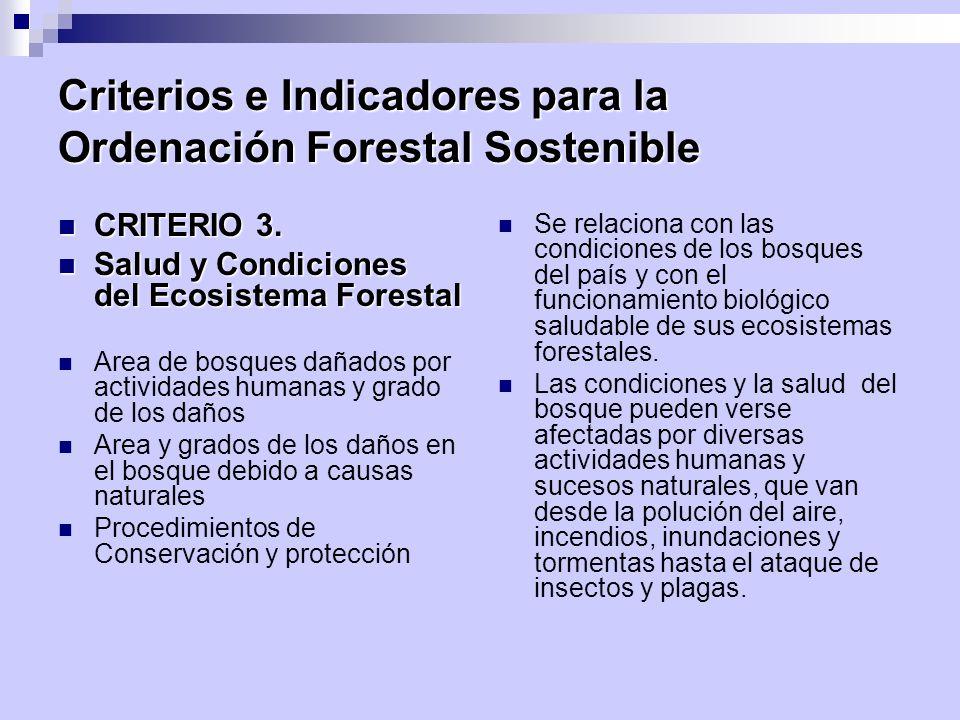 Criterios e Indicadores para la Ordenación Forestal Sostenible CRITERIO 3. CRITERIO 3. Salud y Condiciones del Ecosistema Forestal Salud y Condiciones