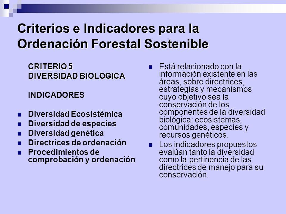 Criterios e Indicadores para la Ordenación Forestal Sostenible CRITERIO 5 DIVERSIDAD BIOLOGICA INDICADORES Diversidad Ecosistémica Diversidad de espec