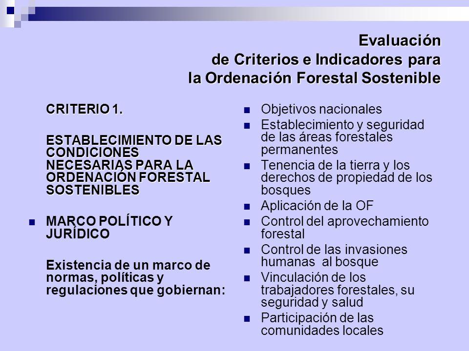 Evaluación de Criterios e Indicadores para la Ordenación Forestal Sostenible CRITERIO 1. ESTABLECIMIENTO DE LAS CONDICIONES NECESARIAS PARA LA ORDENAC