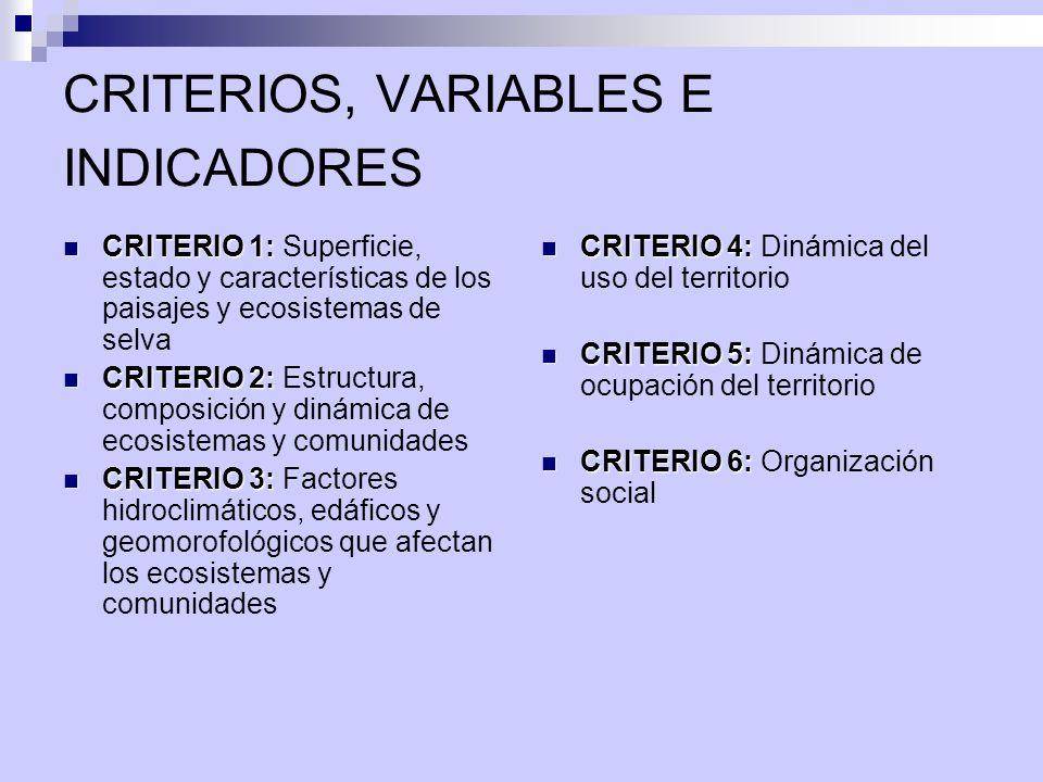 CRITERIOS, VARIABLES E INDICADORES CRITERIO 1: CRITERIO 1: Superficie, estado y características de los paisajes y ecosistemas de selva CRITERIO 2: CRI