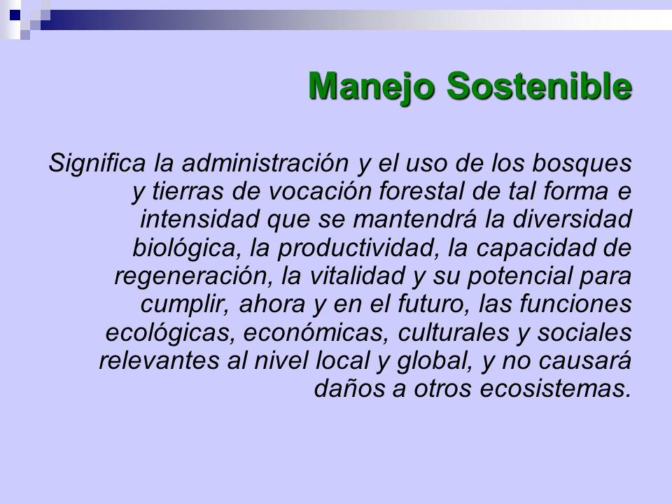 Criterios e Indicadores para la Ordenación Forestal Sostenible CRITERIO 4.