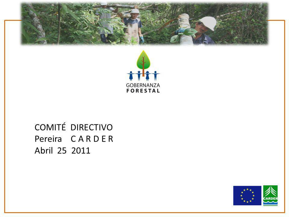 COMITÉ DIRECTIVO Pereira C A R D E R Abril 25 2011