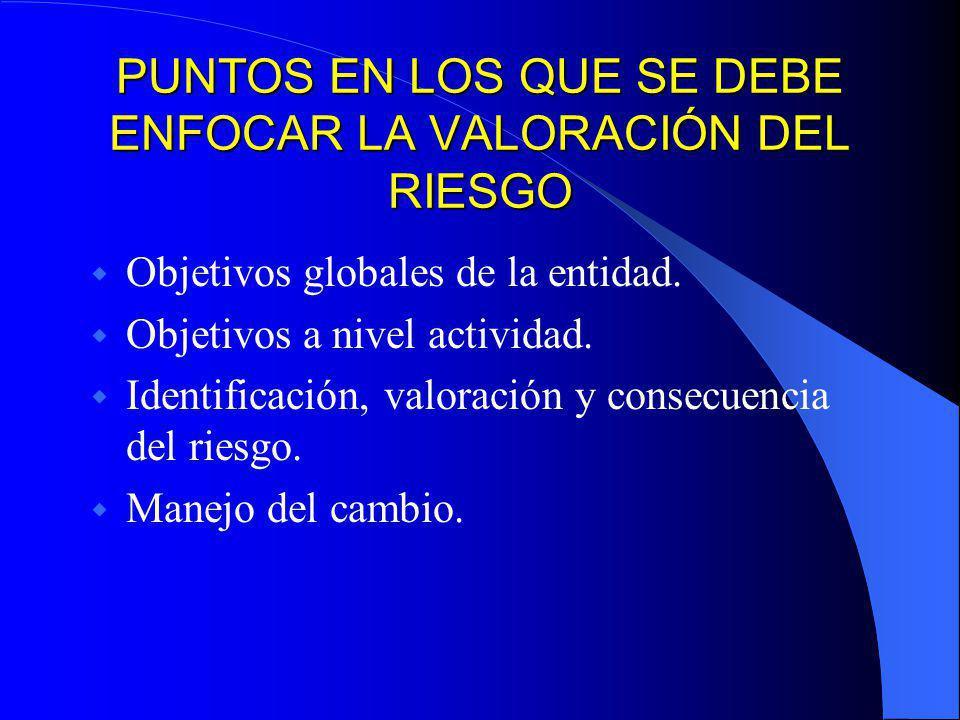 EN TODA ACTIVIDAD SE DEBERÁ INCLUIR LOS RIESGOS PROBABLES Riesgo de país (políticas - macroeconómicas) Riesgos de negocio. Riesgos de operaciones. Rie
