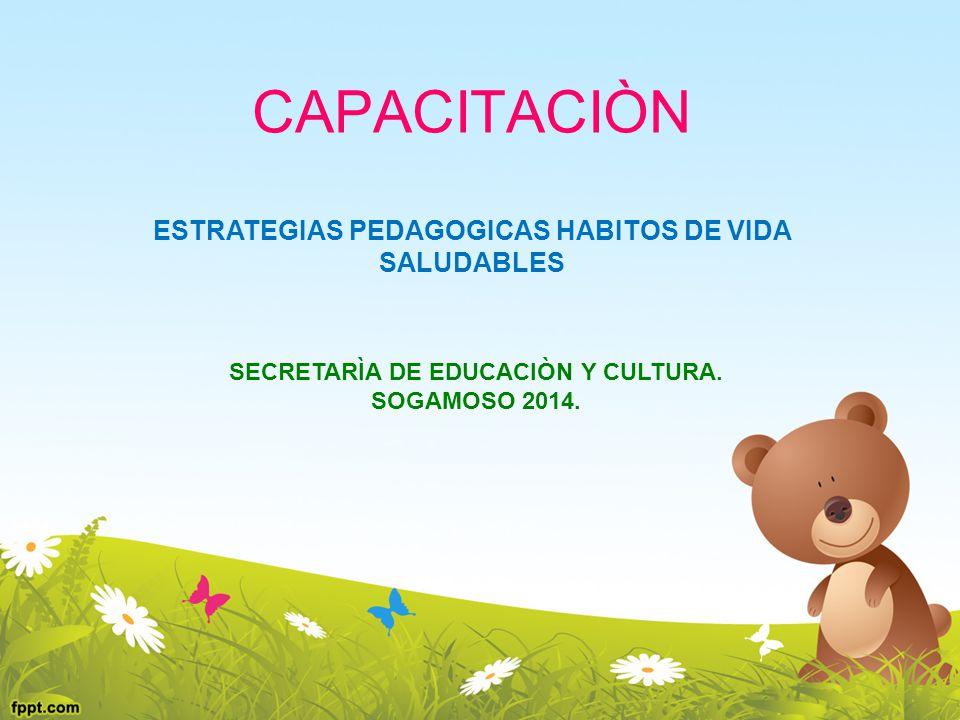 CAPACITACIÒN ESTRATEGIAS PEDAGOGICAS HABITOS DE VIDA SALUDABLES SECRETARÌA DE EDUCACIÒN Y CULTURA. SOGAMOSO 2014.