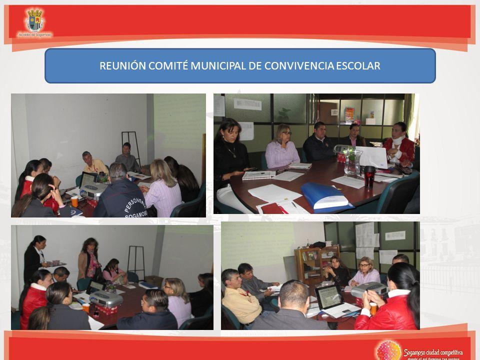 REUNIÓN COMITÉ MUNICIPAL DE CONVIVENCIA ESCOLAR