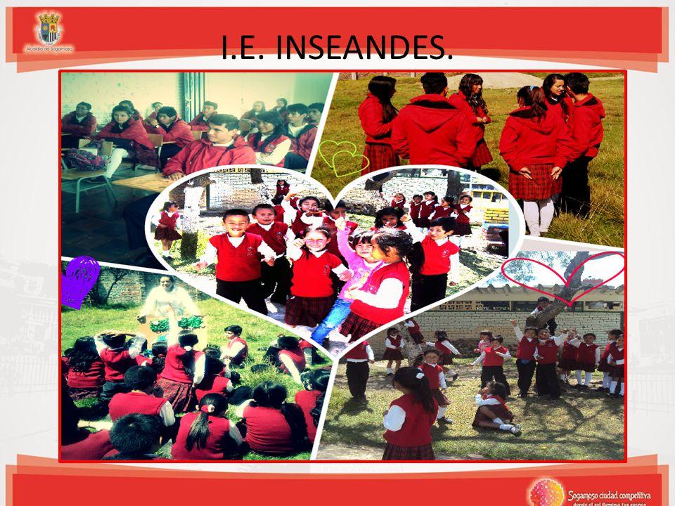 I.E. INSEANDES.