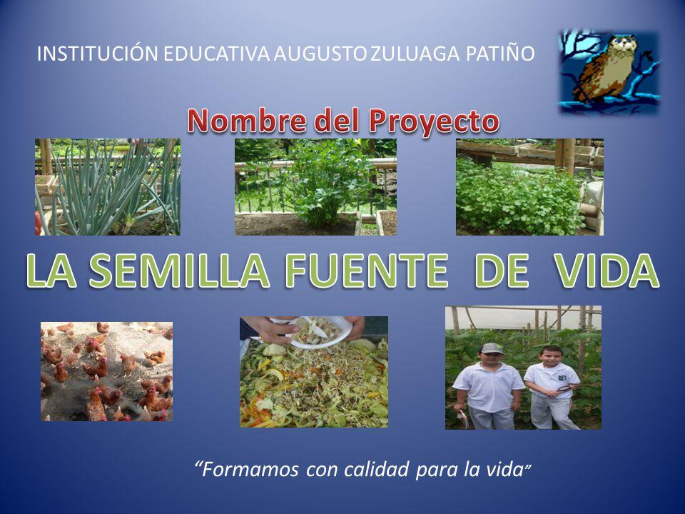 INSTITUCION EDUCATIVA AUGUSTO ZULUAGA PATIÑO Formamos con calidad para la vida La semilla es el inicio de una nueva vida.